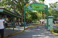 Dunn's River Falls Tour from Falmouth